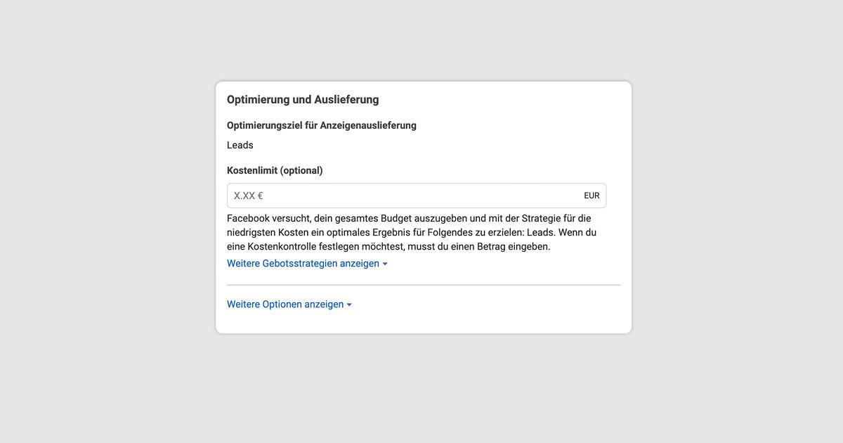 Abbildung einer Facebook Lead Ads Kampagnenerstellung: Optimierung und Auslieferung